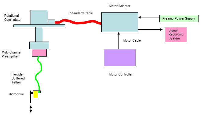 Neural Drive System diagram